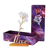 WEISY 24 Karat Gold Rose Blume künstliche Rose Folie für Immer Rose mit Geschenkbox transparenten Ständer, Beste Valentinstag Muttertag, Geburtstag, Dank Tag Geschenke (Lichtlinie ohne Sockel)
